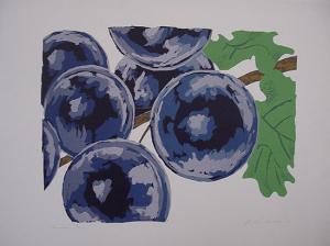 Frits Droog, Druiven