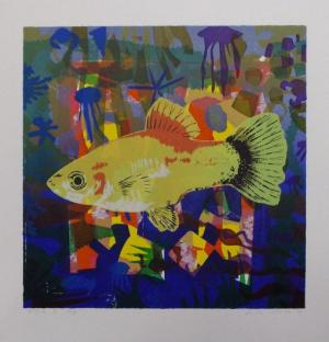 Frits Droog, Fish I