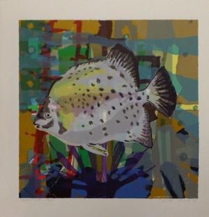 Frits Droog, Moonfish